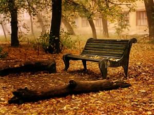 tour du monde famille séchet - automne